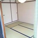 niban 502 tatami
