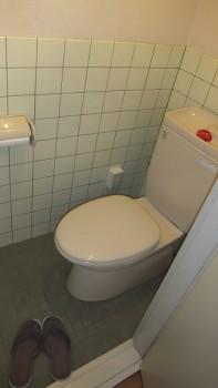 sho 404 toilet