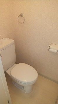 san 339 toilet