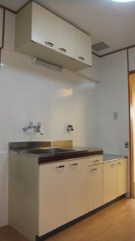 san 420 kitchen